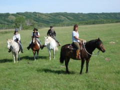 Open range riding
